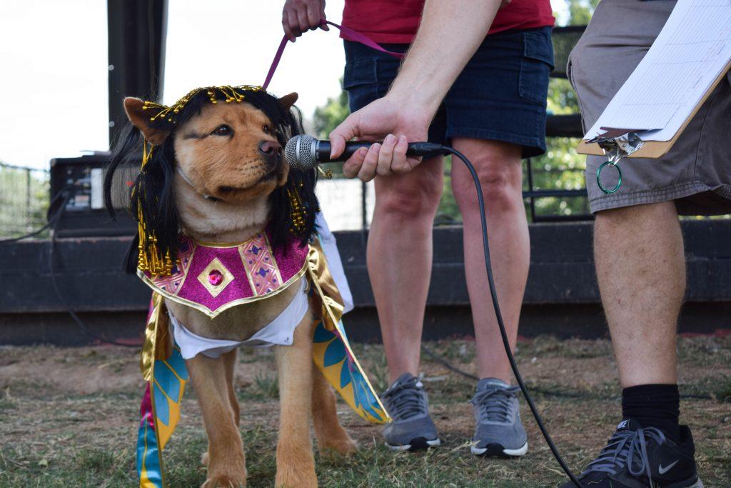 Doggy Cleopatra talking to her fans photo by Daniella Navarro